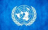 Стажування у Раді ООН з прав людини